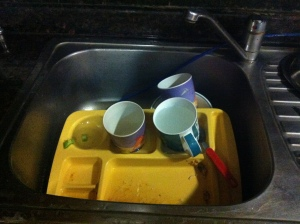 Indian dishwash process